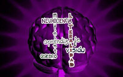 Lateralidad,  Neurocienca y Movimiento